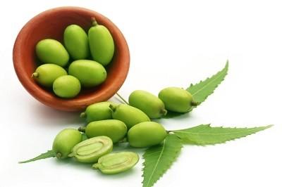 Huile végétale de neem - 100ml & 1000 ml