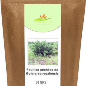 Feuilles de Guiera Senegalensis –  30 grs
