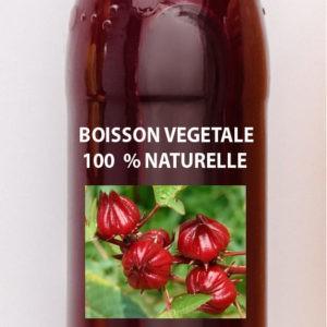 Boisson végétale – Hibiscus-menthe